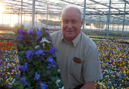 Blue Ribbon Plants, W.Sussex. Grower of Home Grown Plants