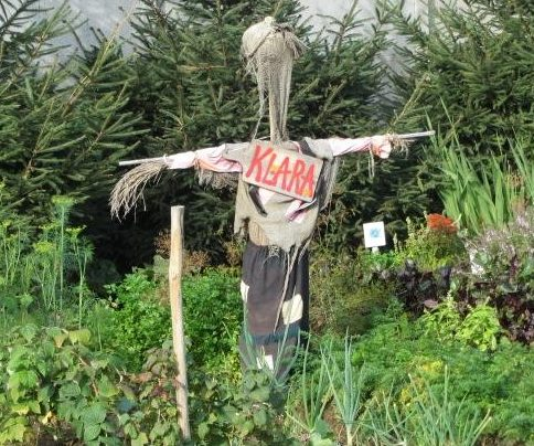 Klara the Polish scarecrow - what name do you give to your's?