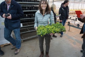 Debbie at Northwest shows the green roof 'tile'