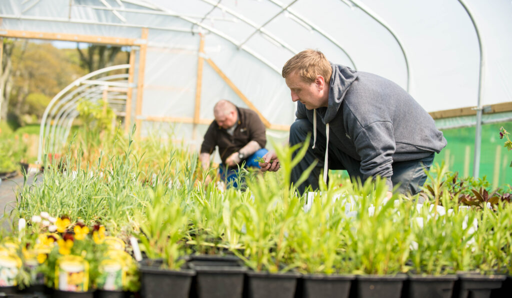 Argyll college students working in a polytunnel