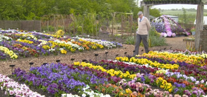 Peter Seabrook guiding visitors in the Flral Fantasia garden at RHS Hyde Hall